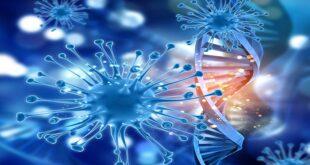 رشته زیست شناسی سلولی و مولکولی