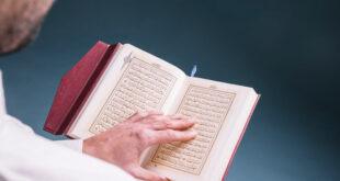 رشته آموزش عربی