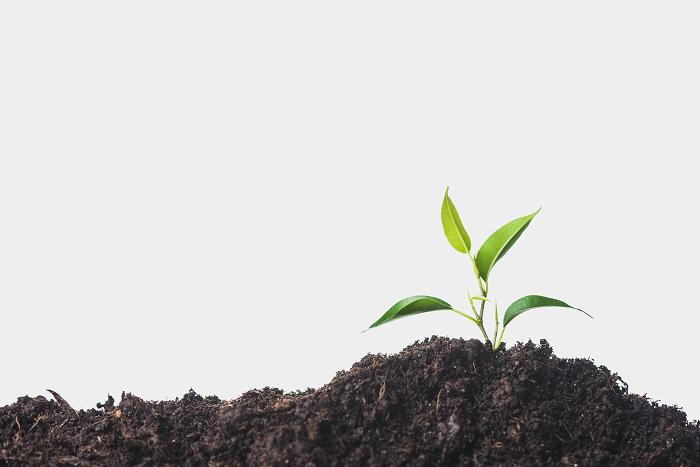 کاردانی امور زراعی و باغی