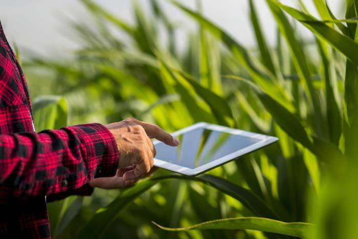معرفی کاردانی تکنولوژی تولیدات گیاهی